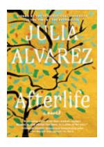 Book cover of Afterlife